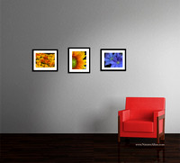 3 11X14 Matted Fine Art Photos - Example